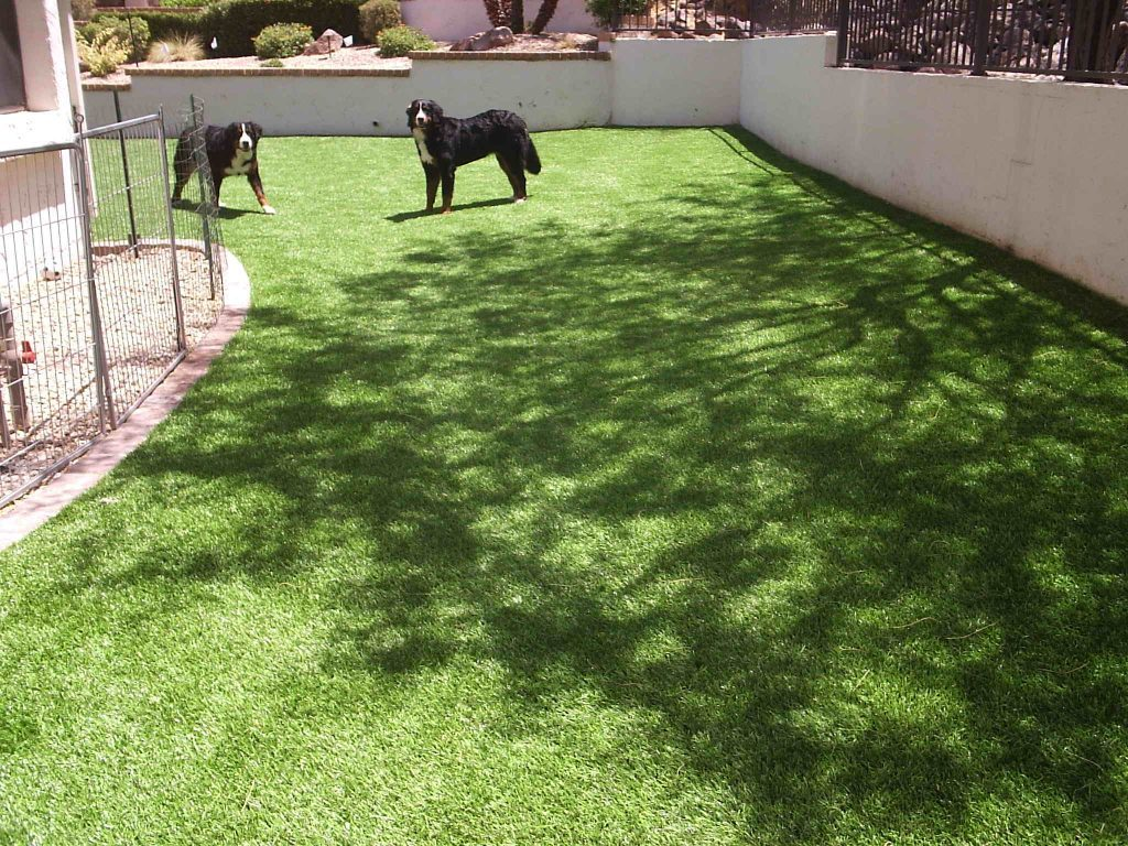 Synthetic Lawn Pet Turf Company San Diego, Best Artificial Pet Turf Pricing